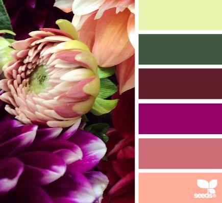 Flora Palette Color Schemes - Life With Lorelai