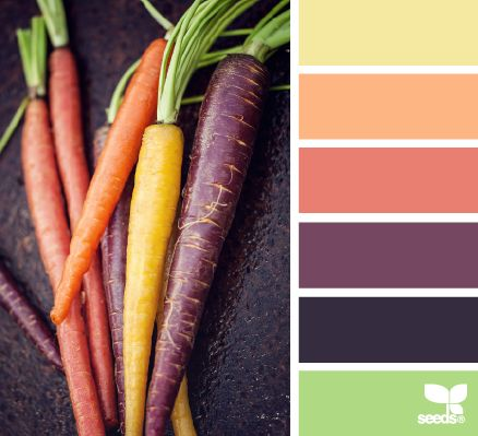 Harvest Hues Color Schemes - Life With Lorelai