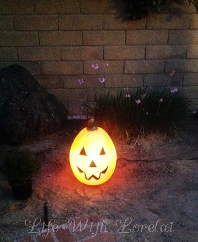 Pumpkin over Malibu light - Life With Lorelai