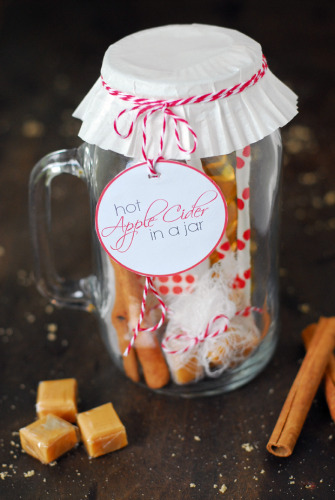 Mason Jar Hot Apple Cider Gift with Free Printable | Life With Lorelai - lifewithlorelai.com