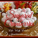 Sugared Cranberries – A Perfect Holiday Treat
