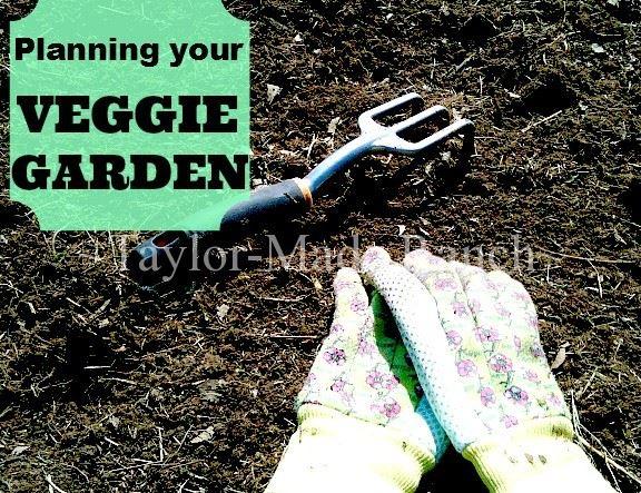 Veggie Garden - HMLP Feature
