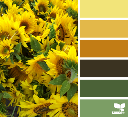 SunnyHues - Design Seeds