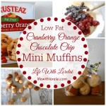Cranberry Orange Chocolate Chip Mini Muffins