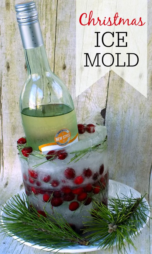 Christmas Ice Mold - Frugally Blonde - HMLP 67 Feature