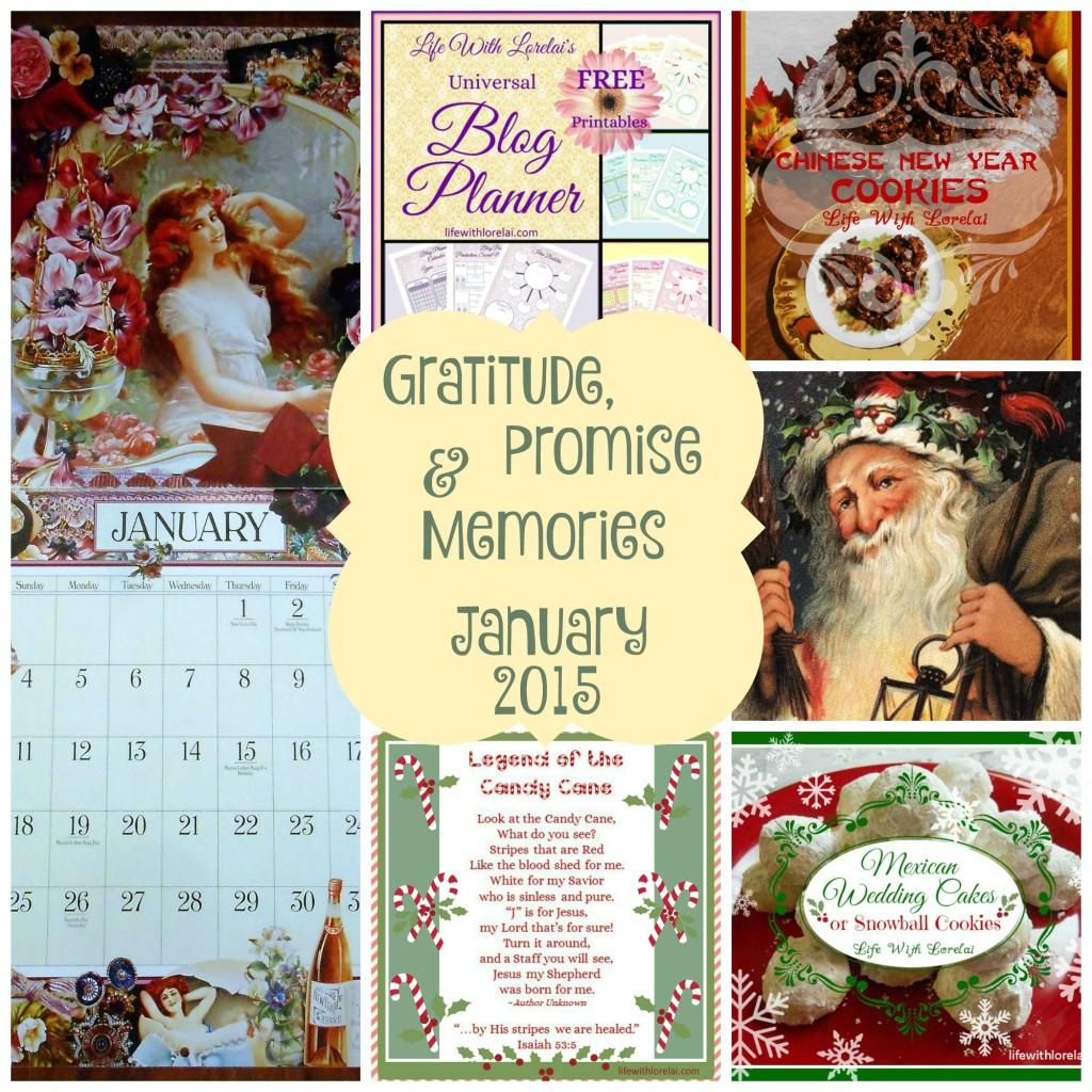 Gratitude-Promise-Memoies-January-2015 - lifewithlorelaidotcom