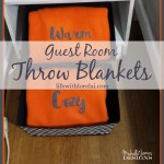 Warm and Cozy Guest Room Throw Blankets
