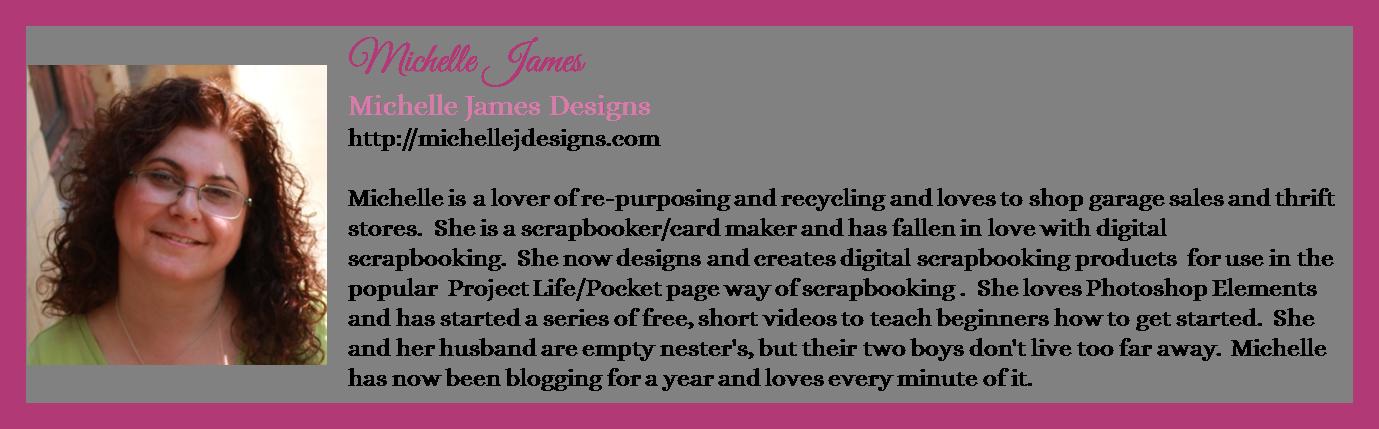 Michelle James - Michelle James Designs - Contributor Bio Graphic - Winter 2016