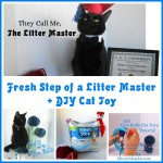 Fresh Step Of A Litter Master + A DIY Cat Toy