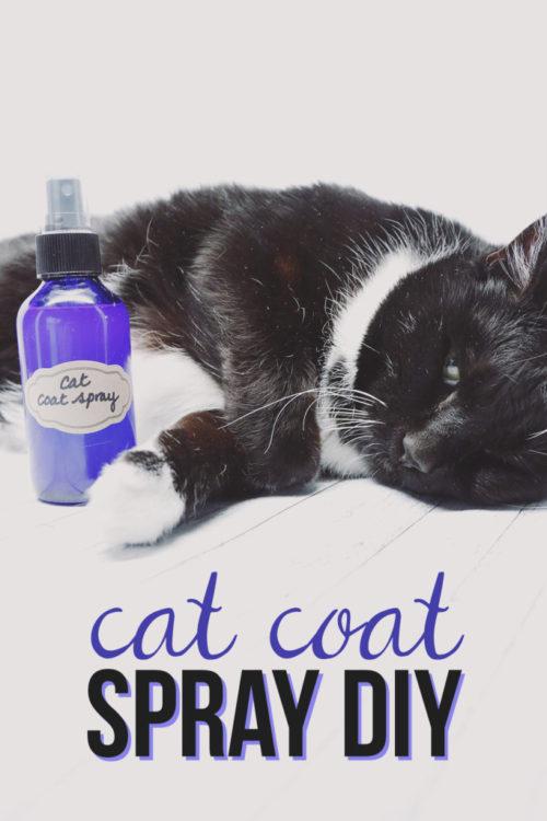 DIY Cat Coat Spray - Hello Nature - HMLP 88 - Feature