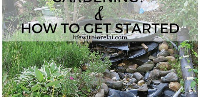 Aquaponics-Gardening-How-To-Start-Life-With-Lorelai