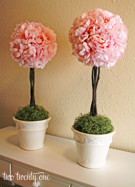 How to Make a Topiary - Two Twenty One - HMLP 89 - Feature