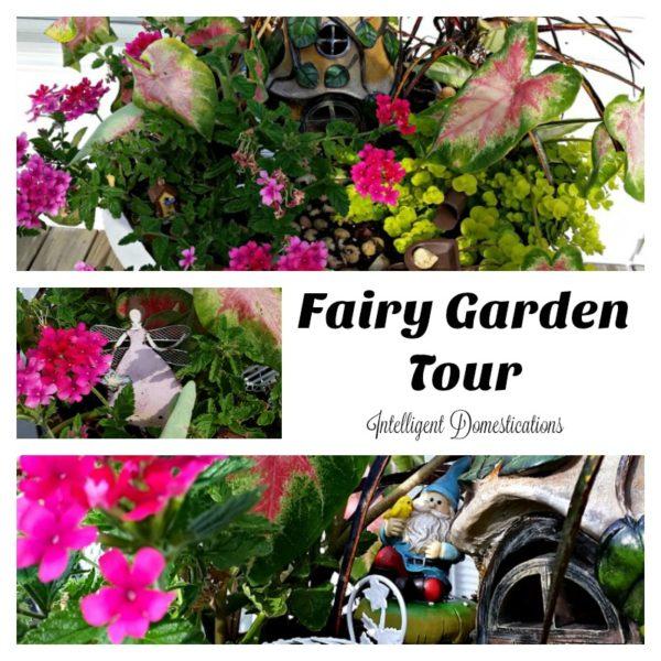 Fairy Garden Tour - Intelligent Domestications- HMLP 96 - Feature