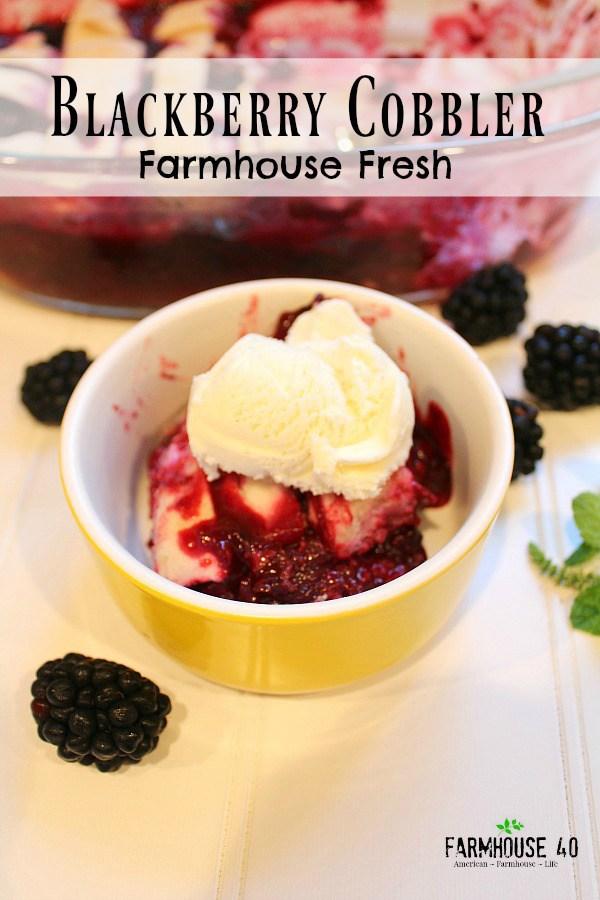 Blackberry Harvest Cobbler - Farmhouse 40 - HMLP 100 - Feature
