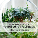 How-To Create A Terrarium For Your Home