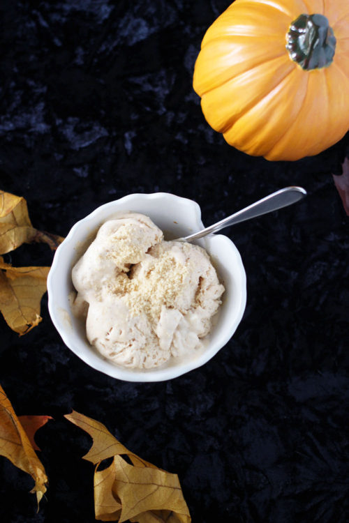 No Churn Pumpkin Ice Cream Recipe with Cinnamon Chips - A Magical Mess - HMLP 105 - Feature