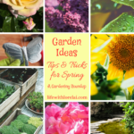 Garden Ideas, Tips and Tricks for Spring