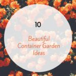 10 Beautiful Container Garden Ideas