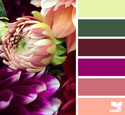 Flora Palette Color Schemes - Life With Lorelai