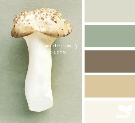 Mushroom Tints Color Schemes - Life With Lorelai