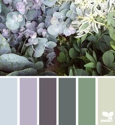 Nature Colors Color Schemes - Life With Lorelai