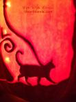 Cat Close-up 2014 - Life With Lorelai