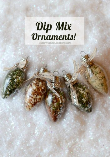 Dip Mix Ornaments - 13 Homemade Gift Ideas - Food