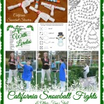California Snowball Fights & Other Fun Stuff