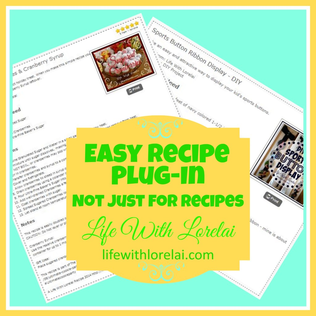 EasyRecipe Plug-In Not Just for Recipes - Life With Lorelai