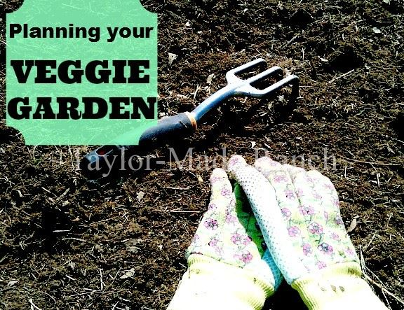 Veggie Garden - HMLP Feature