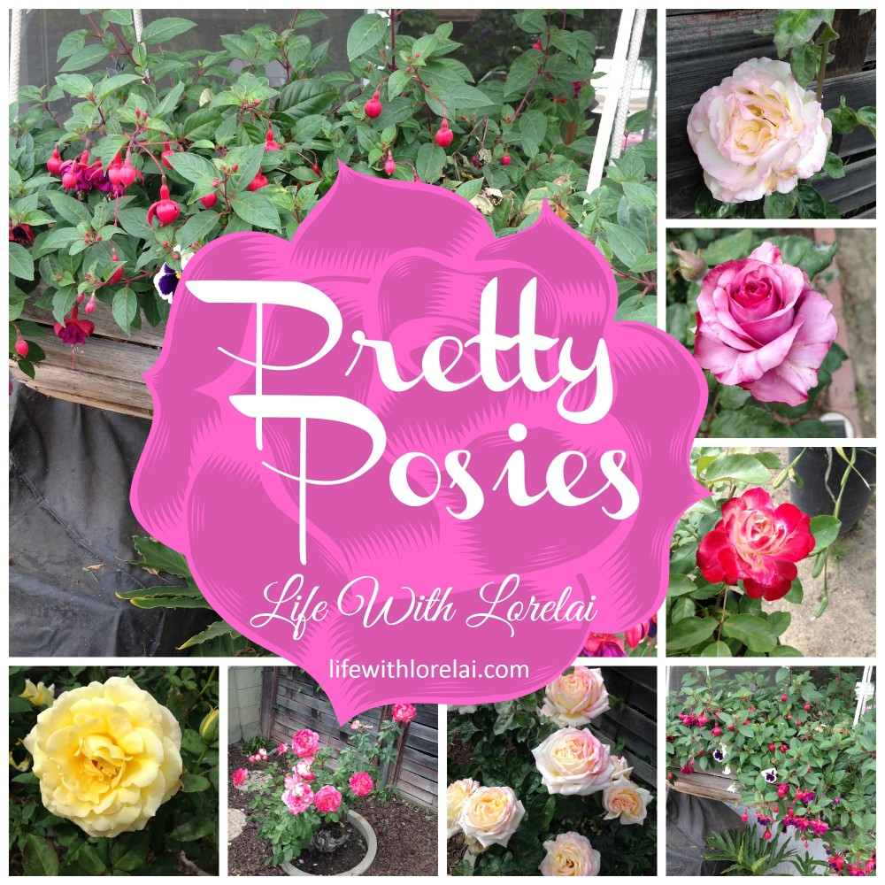 Pretty Posies - Life With Lorelai