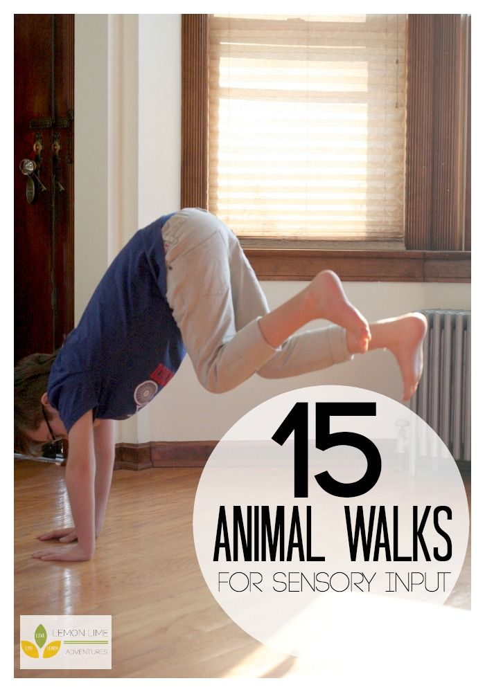 15 Animal Walks for Sensory Input