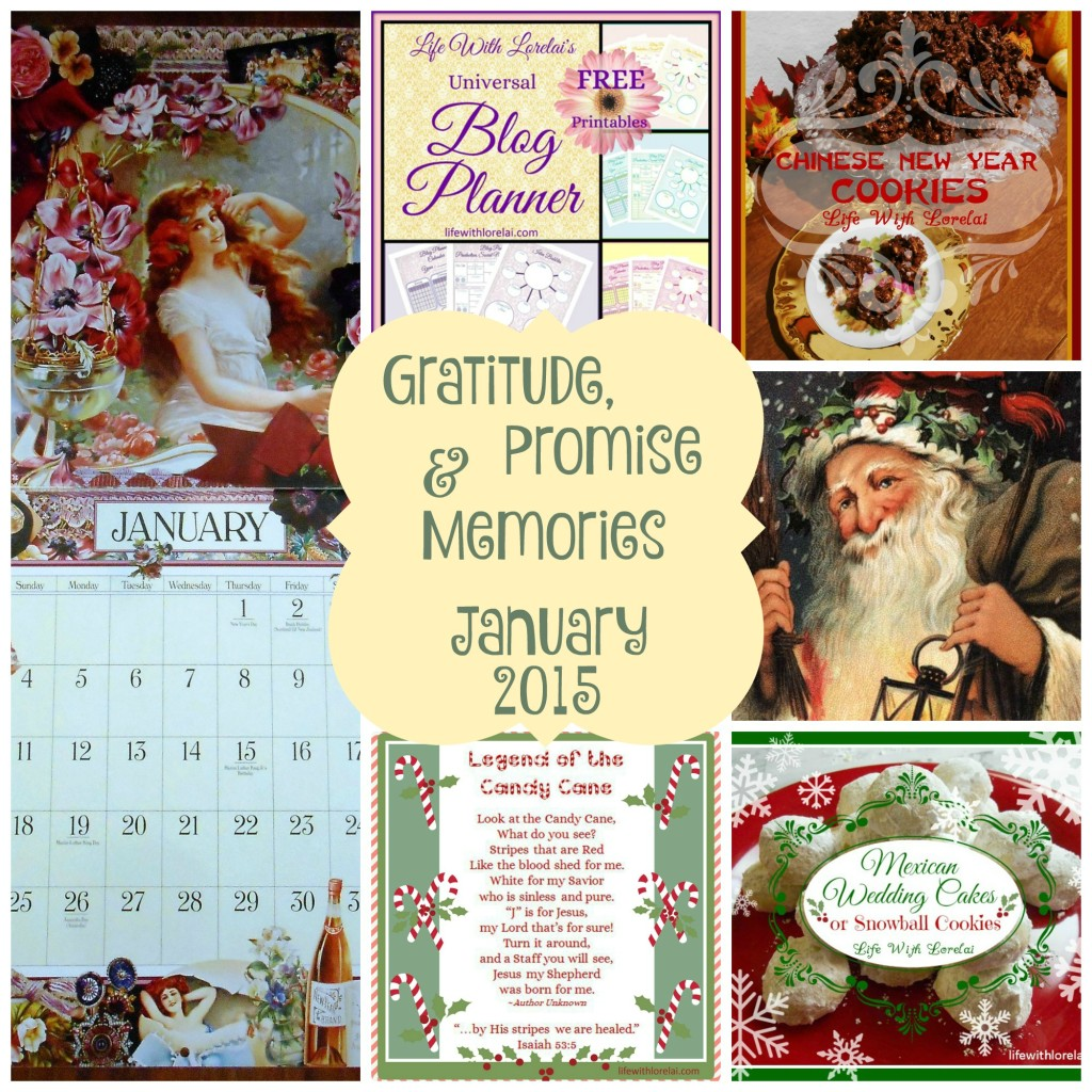 Gratitude-Promise-Memoies-January-2015 - lifewithlorelaidotcom