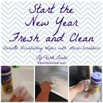 Start the New Year Fresh and Clean with Clorox