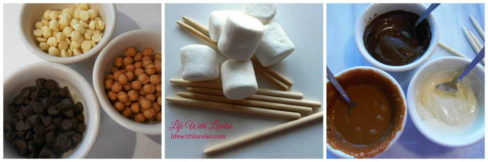 Semi-Sweet Chocolate Chips - White Chocolate Chips - Caramel Bits - Marshmallows - Lolipop Sticks - LWL