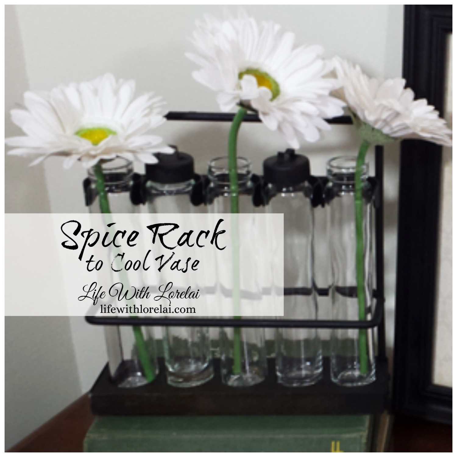 Spice-Rack-Cool-Vase-Life-With-Lorelai