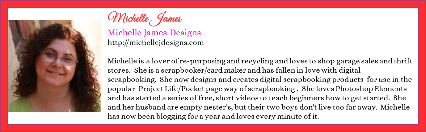 Michelle James - Michelle James Designs - Contributor Bio Graphic - Spring 2016