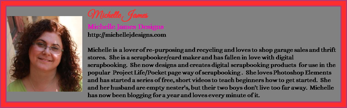 Michelle James - Michelle James Designs - Contributor Bio Graphic - Spring 2016