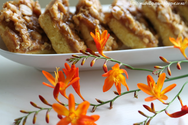 Salted Caramel Peanut Squares - Mia Bella Passion - HMLP 76 - Feature