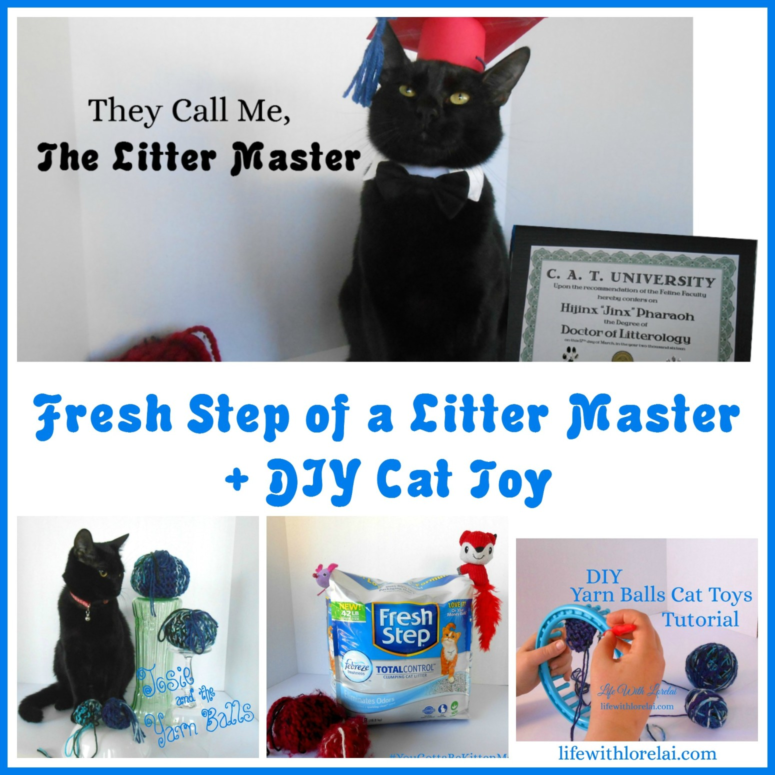 Fresh-Step-Litter-Master-DIY-Cat-Toy-Life With Lorelai