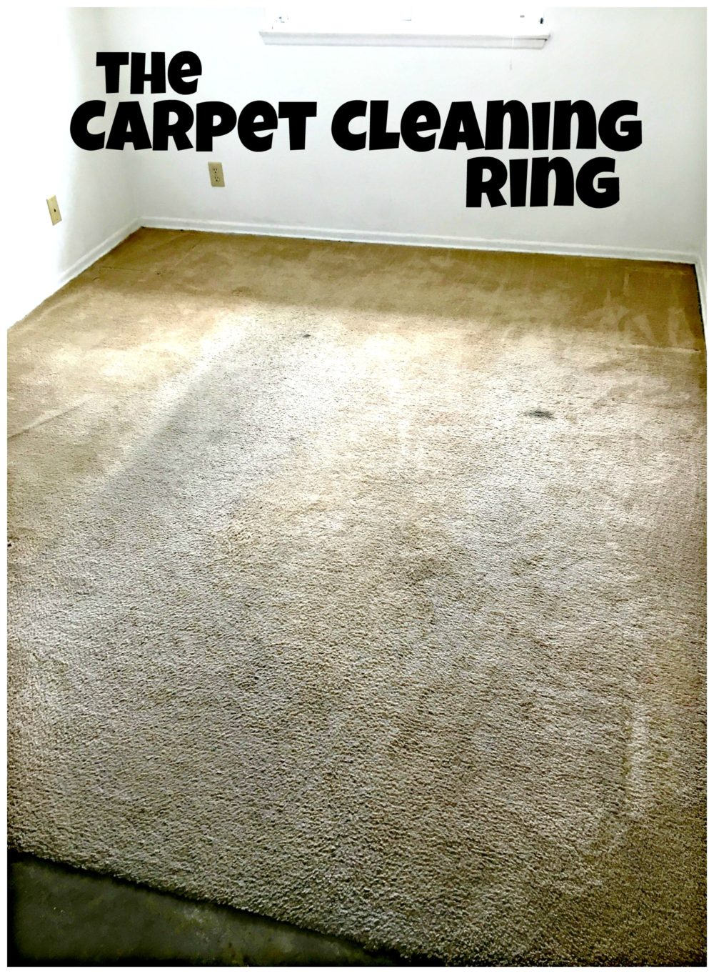 Carpet-Cleaning-Ring-BISSELL-Big-Green-Rug-Doctor