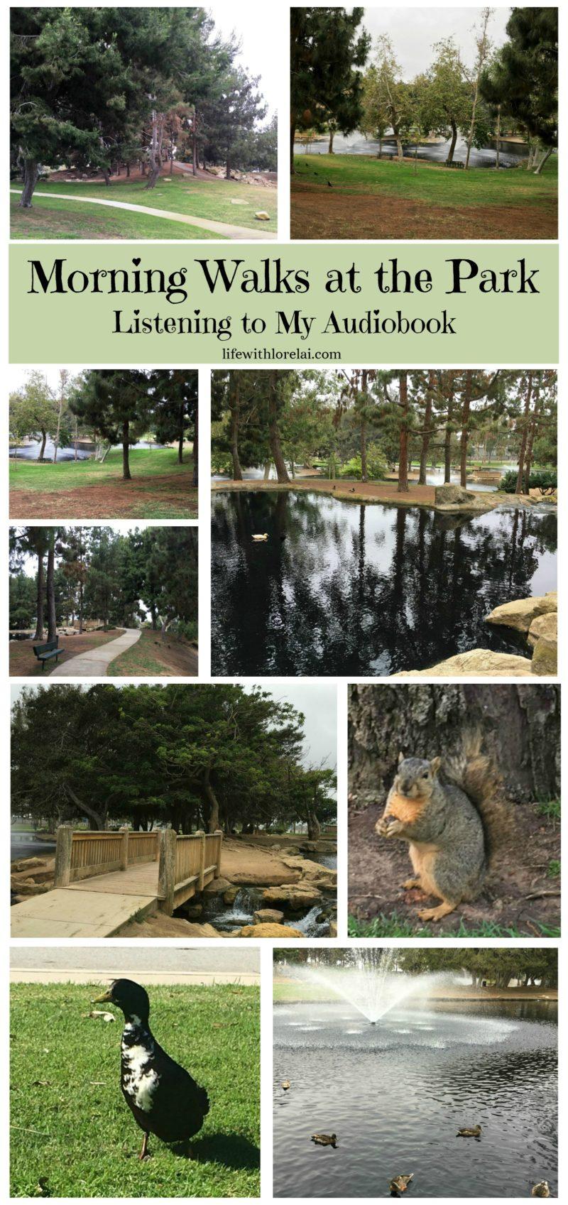 Morning-walk-routine-serenity-centrum-squirrel-duck-park