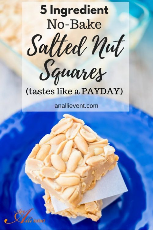 5 Ingredient No-Bake Salted Nut Squares - An Alli Event - HMLP 105 - Feature