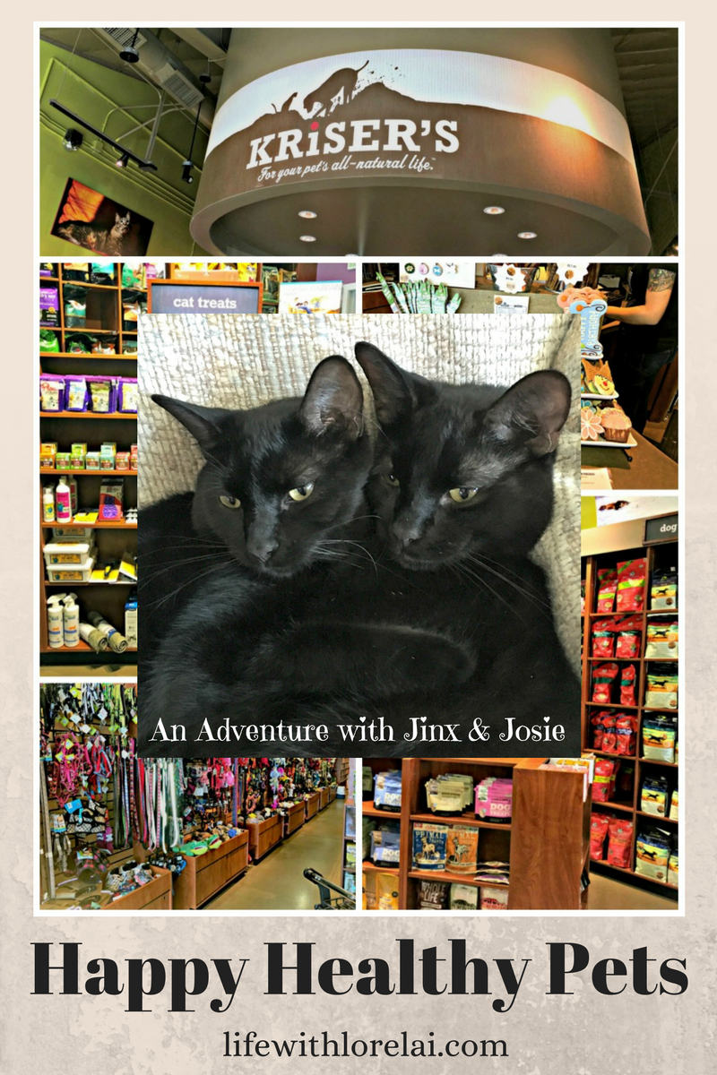 Happy Healthy Pets - Jinx and Josie. The cats go shopping at Kriser's Natural Pet Store. AD #HappyHealthyPets #KrisersHolisticHealth #sweepstakes
