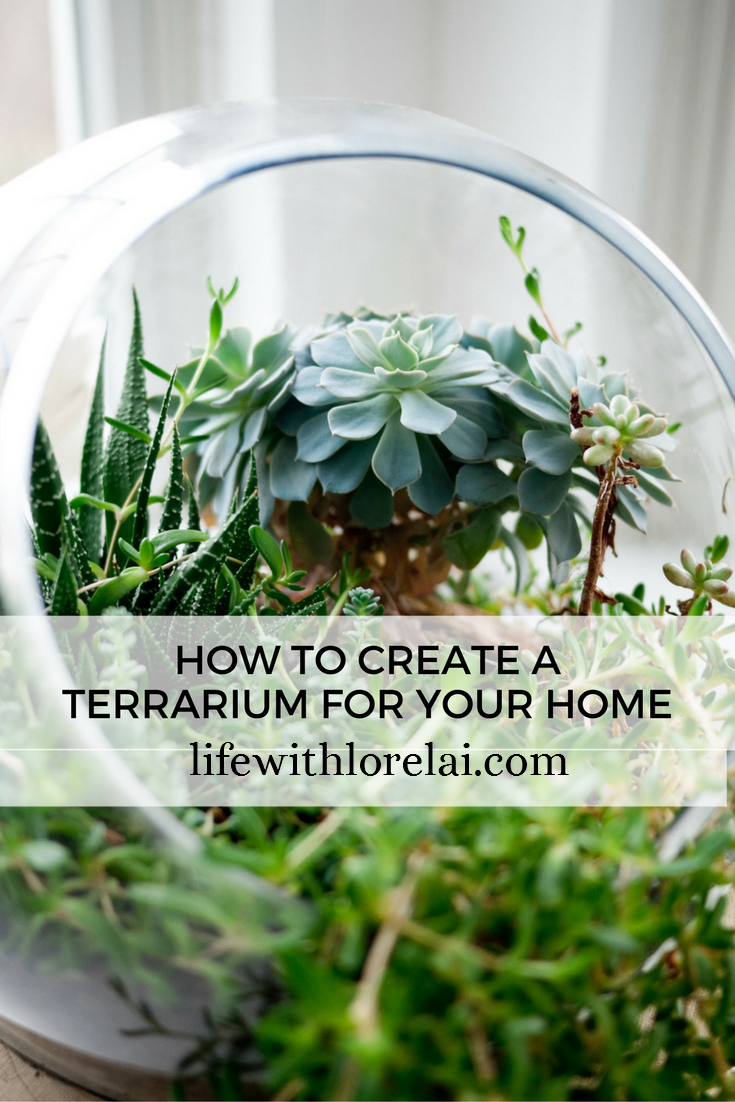 Bring the joy of gardening indoors with this fun and easy DIY Terrarium for your home. Add the beauty of plants to your home decor.