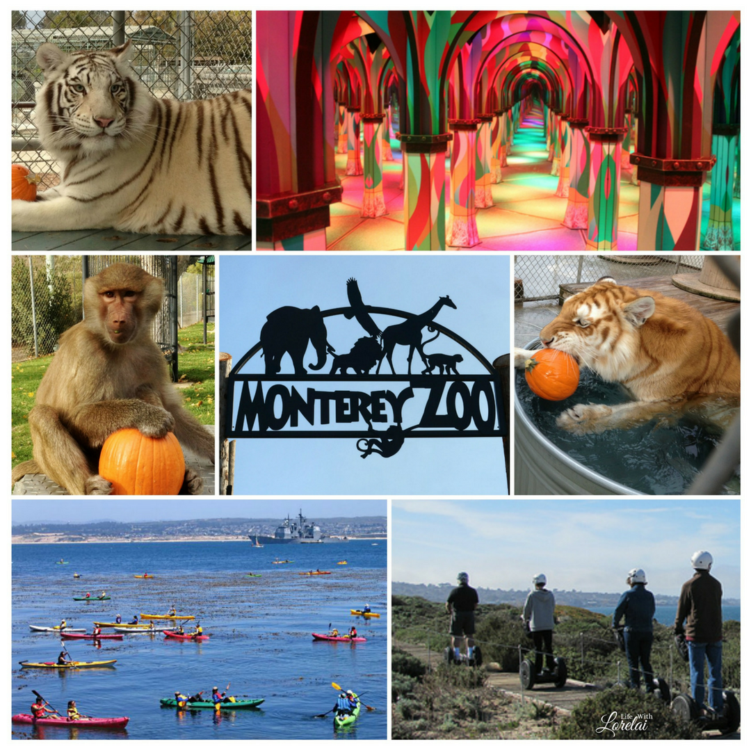 What's special about Monterey County, CA? Everything! Put this stunning location on your bucket list. See Monterey, and experience its marathon of moments.