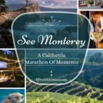 See Monterey – A California Marathon Of Moments