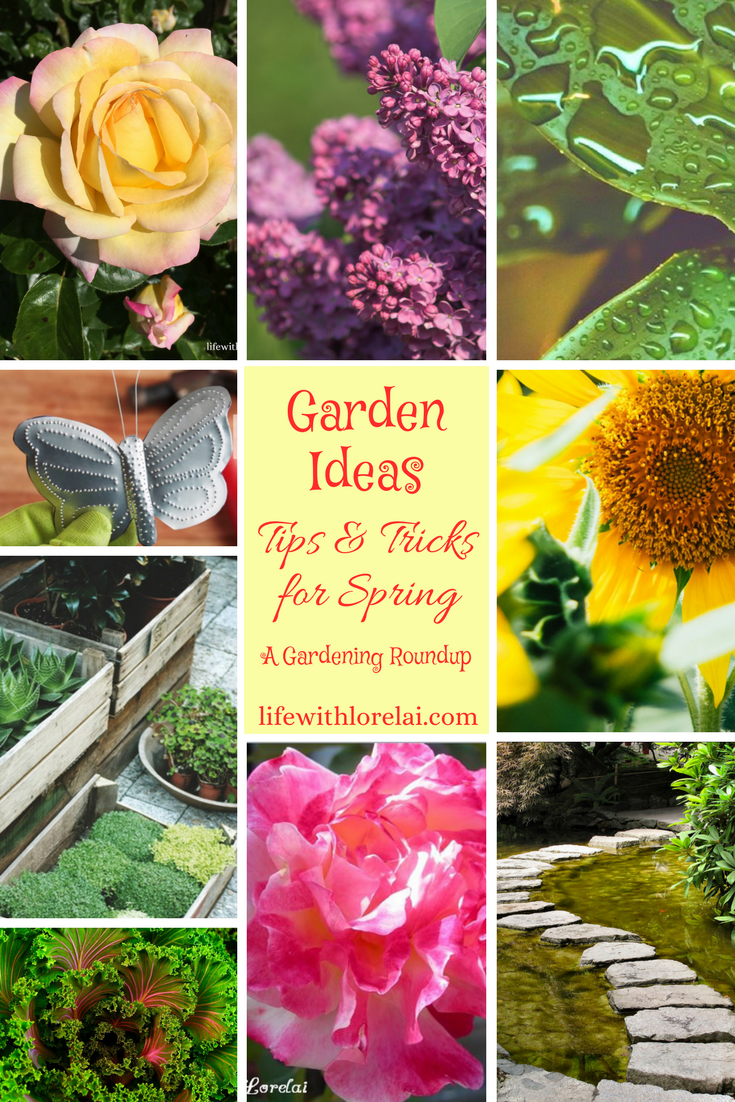 Gardening Is A Fun And Productive Way To De Stress. Discover Wonderful  Garden Ideas