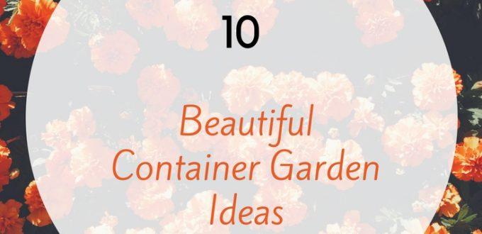 10 Beautiful Container Garden Ideas