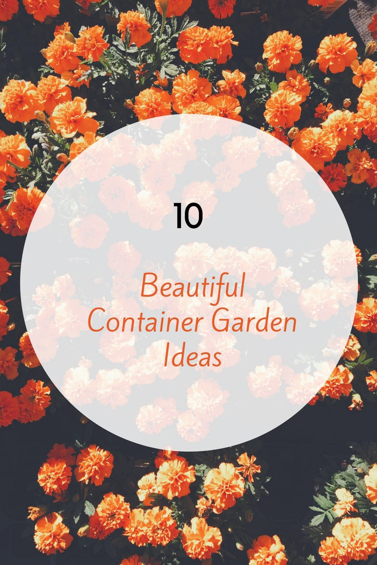 A Collection Of 10 Beautiful Container Garden Ideas That Youu0027re Sure To  Love!